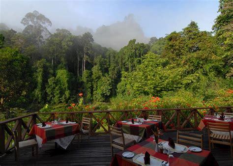 borneo rainforest lodge hotels  danum valley audley