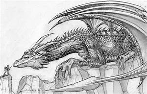 Dragon, Knight and Dragon sketch on Pinterest