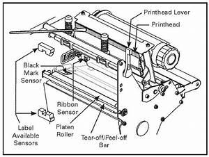 How To Do Zebra Printer Maintenance