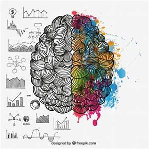 Hemisferios cerebrales en estilo de dibujo Descargar Vectores gratis