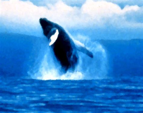 If you're looking for the best orca wallpaper then wallpapertag is the place to be. Jumping Orca Painting Background Image, Wallpaper or ...