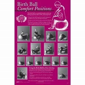 Birthing Charts Set Of 6 Childbirth Graphics