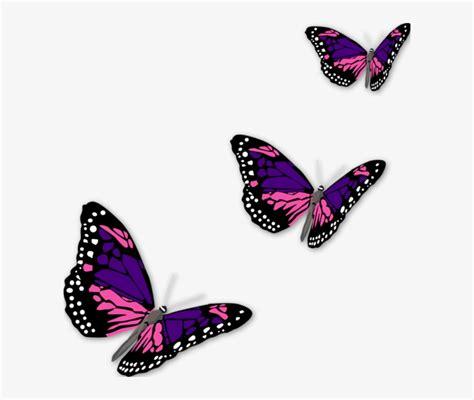 Butterflies Clipart Butterfly PNG Image Transparent