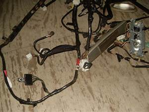 Purchase Wire Harness Interior Lights And Seat Belt Timer