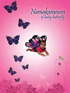 Butterfly theme Backdrop - Untumble.com