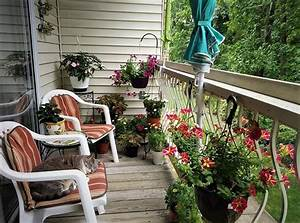 17, Balcony, Garden, Pictures, For, Inspiration, From, Our, Readers