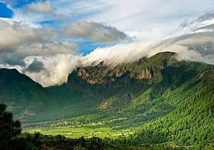 La Palma: die grüne Insel Bild 3 [LIVING AT HOME]