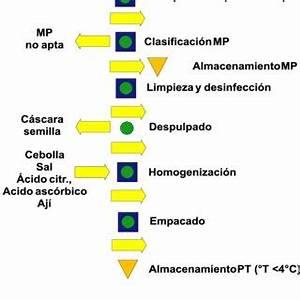 Ecosistema del negocio | Download Scientific Diagram