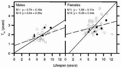Perch Maturation Oldest Span Versus Age Yellow
