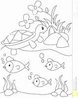 Pond Coloring Pages Royalty Habitat Animals Arctic Printable Getcolorings Animal Print Plants Getdrawings sketch template
