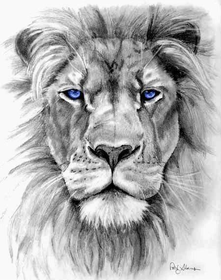 Bildergebnis für lion tattoo 3d   Ausgestopftes tier, Wolf