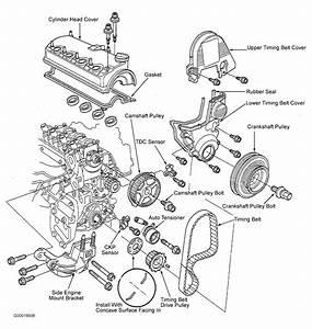 1999 Honda Civic Dx Manual
