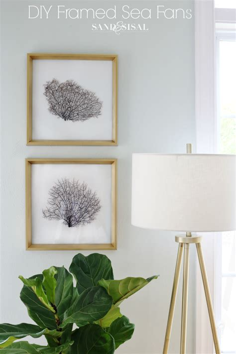 sea fans for sale diy framed sea fans adding coastal glam to any room