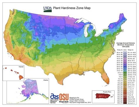 Usda Hardiness Zone Map Info For Plant Health And Vitality