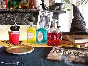 Deco Harry Potter Anniversaire : decoration fetes de anniversaire harry potter ~ Melissatoandfro.com Idées de Décoration
