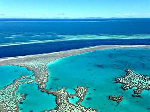Family Trip To Australia Hamilton Island And Great