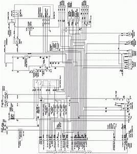 10 Simple Electrical Wiring Diagram Hyundai Atos