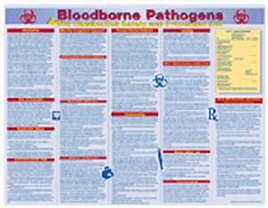 Bloodborne Pathogens Safety Poster Laminated