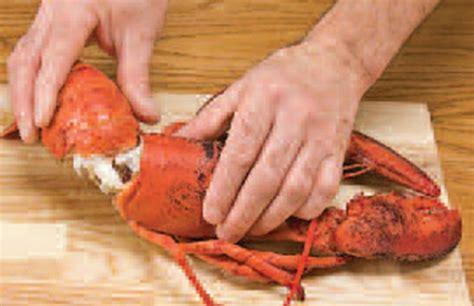 comment cuisiner un homard comment décortiquer le homard