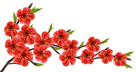 Red Flower Clipart Transparent Free collection   Download ...