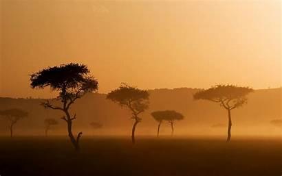 African Background Savannah Sunset 1600 2560a Iphone