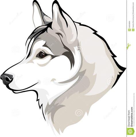 Siberian Husky Outline Color