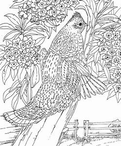 Coloring Pages Difficult Coloring Pages For Kids