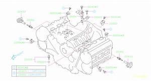 22401aa781 - Spark Plug  Tension  Cord  High