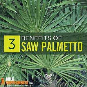 Saw Palmetto  Benefits  Side Effects  U0026 Dosage