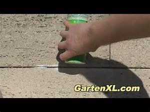 Ameisen Auf Der Terrasse : ameisen bek mpfen auf der terrasse ameisenbek mpfung im ~ Lizthompson.info Haus und Dekorationen