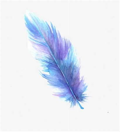 Feather Transparent Watercolor Digital Background Painting Artwork