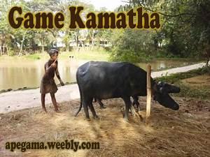 kamatha Authentic Sri Lankan VillageApe Gama