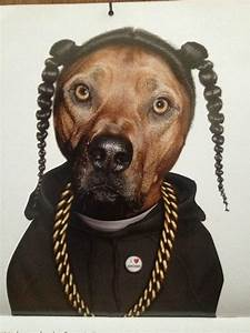 Snoop Dogg's dog=LOL | The Pitbull Pack: Gifts for a ...