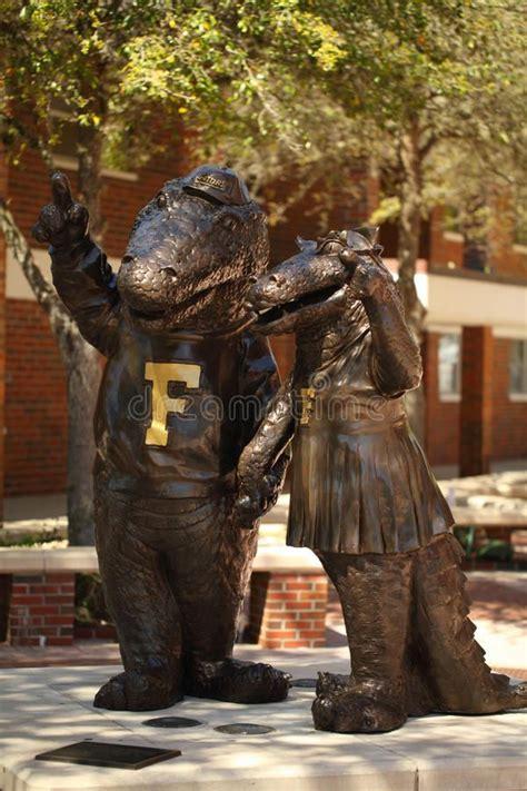 University of Florida Alligator Mascots. Gainesville ...