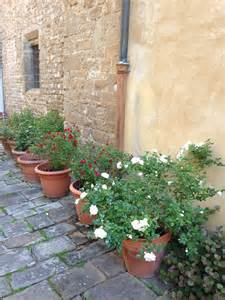 Italian Courtyard Gardens