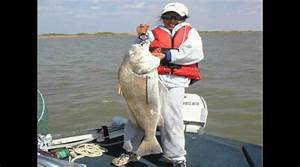 East Matagorda Bay Fishing Spots Fishsargent