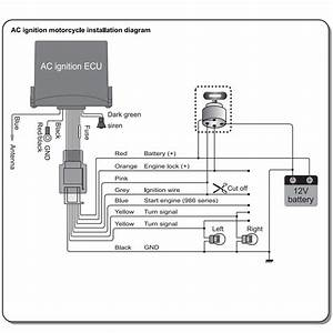 Chinese Atv Alarm Wiring Diagram