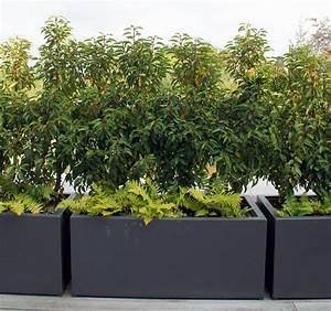 Bac Plantes Exterieur Castorama : jardin priv vereal ~ Dailycaller-alerts.com Idées de Décoration