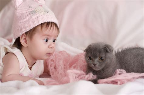Bilder Hässliches Baby by Babys Und Katzen Passt Diese Kombination Zusammen