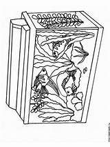 Aquarium Coloring Pages Printable Plant Template Recommended Templates Mycoloring sketch template