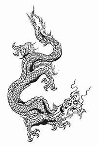 japanese dragon, japanese dragon tattoo, japanese dragon ...