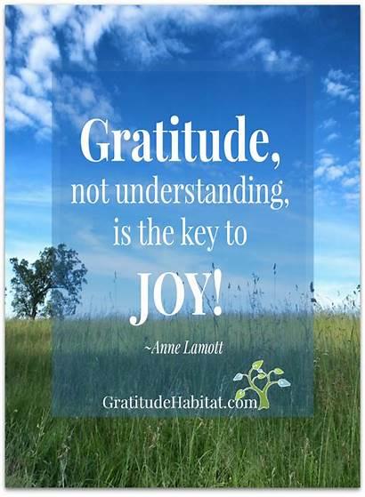 Gratitude Quotes Joy Attitude Gratitudehabitat Lord