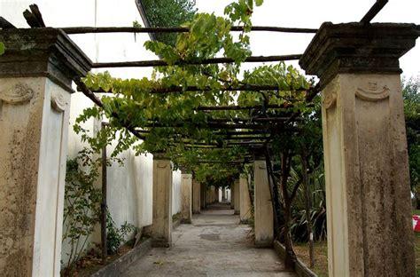 tettoie in muratura costruire un pergolato pergole e tettoie da giardino