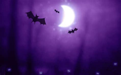 Iphone Wallpaper Bats by Bats Wallpapers Hd Wallpapers Id 11875