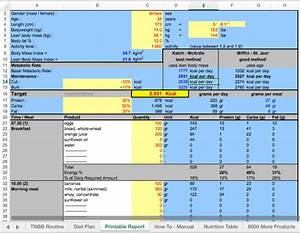 Excel Sheet Diet Plan By Antonioarjona