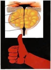 Лечение простатита в нефтекамске