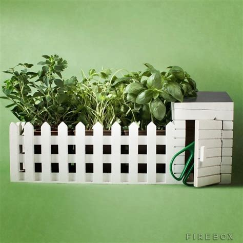 indoor allotment herb growing kit holycool net