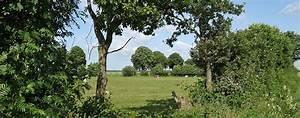 Baum Fällen Zeitraum Schleswig Holstein : schleswig inhalte schleswig holstein landschaft und natur ~ Whattoseeinmadrid.com Haus und Dekorationen