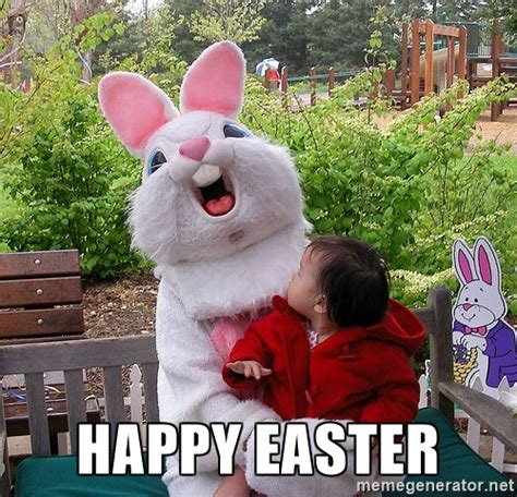 Easter Bunny Memes - the gallery for gt easter memes