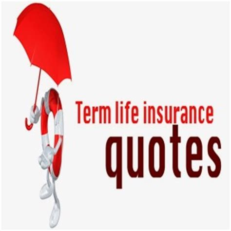 term insurance quotes terms quotes quotesgram